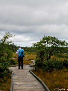 Cape Breton Highlands NP