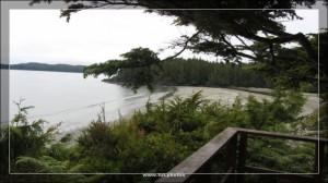 Middle Beach Lodge Tofino